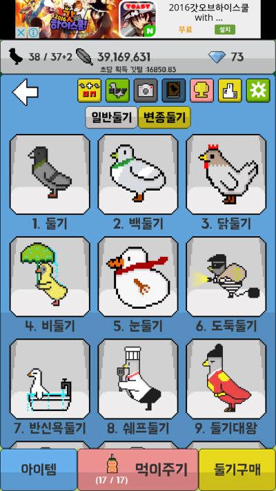 비둘기 키우기 (5)