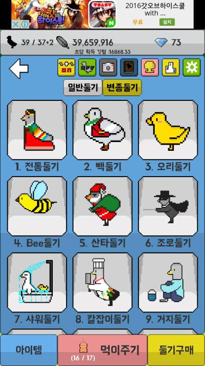 비둘기 키우기 (8)