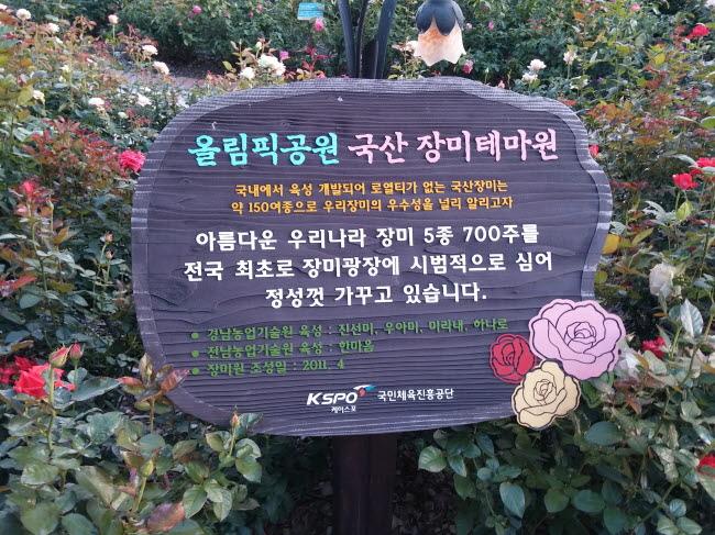 올림픽공원 장미원 국산