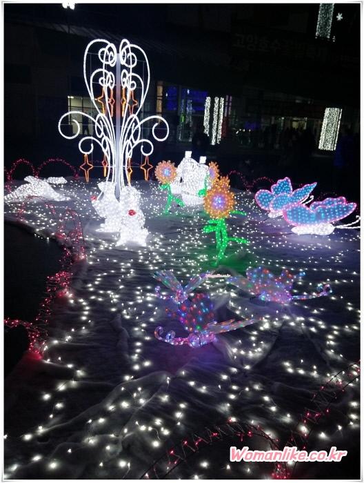 고양 호수 꽃빛축제 일산 호수공원 꽃빛축제 (3)