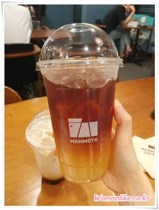 매머드 커피 (1)