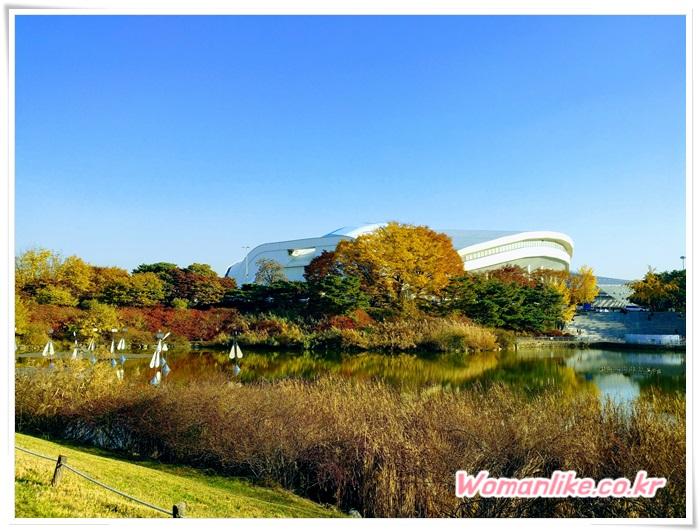 올림픽공원 가을 단풍 (2)