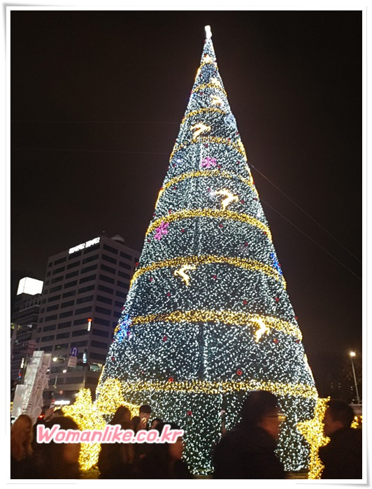 서울 시청 광장 크리스마스 대형 트리